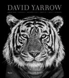 David Yarrow Photography,大卫亚罗摄影集
