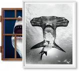 【Art Edition】Michael Muller. Sharks(No. 101-200) ,迈克尔·穆勒:鲨鱼(101-200)